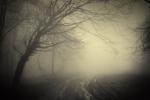 Zimowa depresja - jak sobie z nią poradzić? [© andreiuc88 - Fotolia.com]