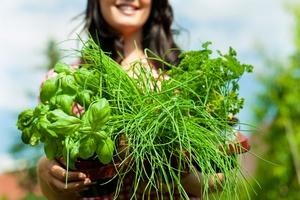 Zioła i przyprawy pomagają ograniczyć ilość soli w diecie [© Kzenon - Fotolia.com]