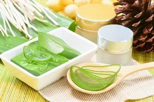 Zioła w służbie zdrowiu - aloes na oparzenia i problemy żołądkowe [Aloes, © peangdao - Fotolia.com]