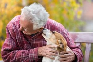 Zooterapia w domu opieki - jak zwierzęta poprawiają nastrój starszych ludzi [Fot. Budimir Jevtic - Fotolia.com]