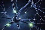 Zwalczanie choroby Parkinsona nanocząstkami węgla [© Sashkin - Fotolia.com]