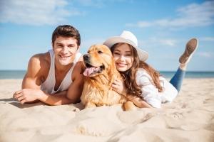 Zwierzak na wakacjach. O czym należy pamiętać? [Fot. Drobot Dean - Fotolia.com]