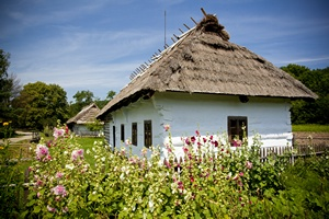 Życie na wsi chroni przed astmą i alergią? [© andreshka - Fotolia.com]