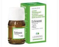 Echinacea Complexe Nr 40 krople doustne, roztwór